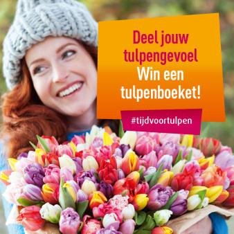 Dian Biemans Tulpen Weken 2016